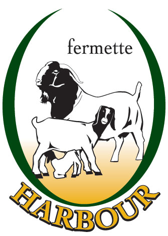 Fermette Harbour Inc