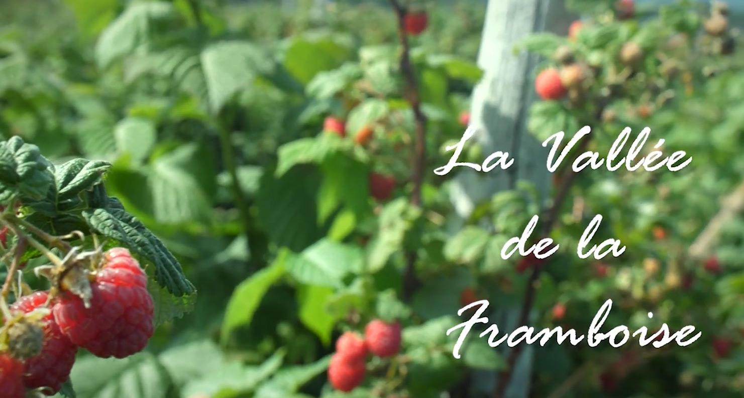 La Vallée de la Framboise inc.
