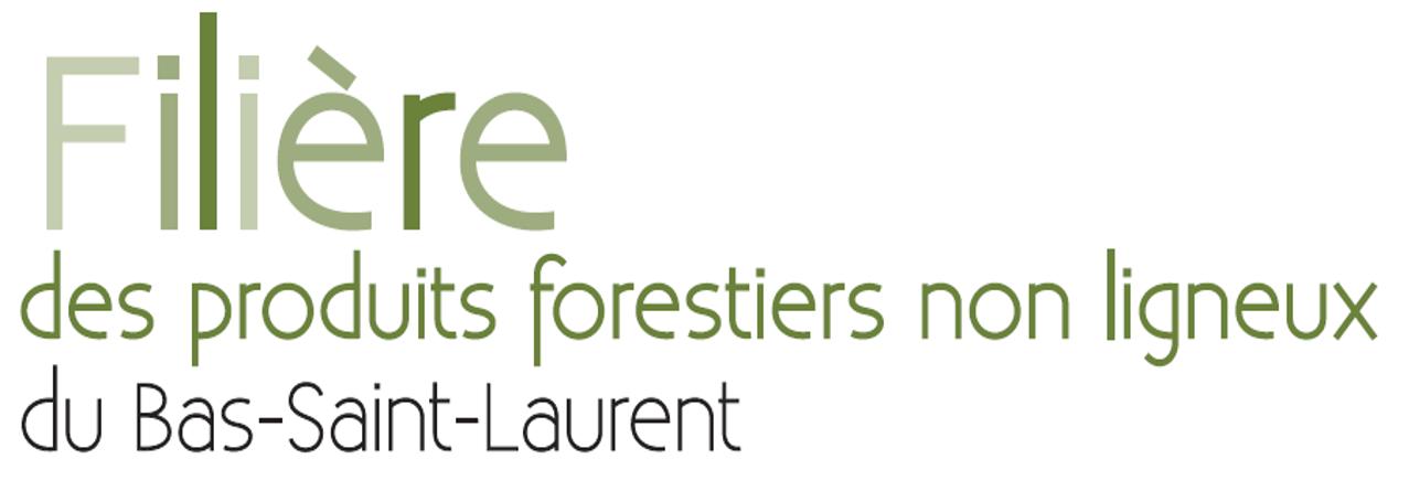 Logo filière PFNL